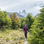 Die Wanderung zurück nach El Chalten